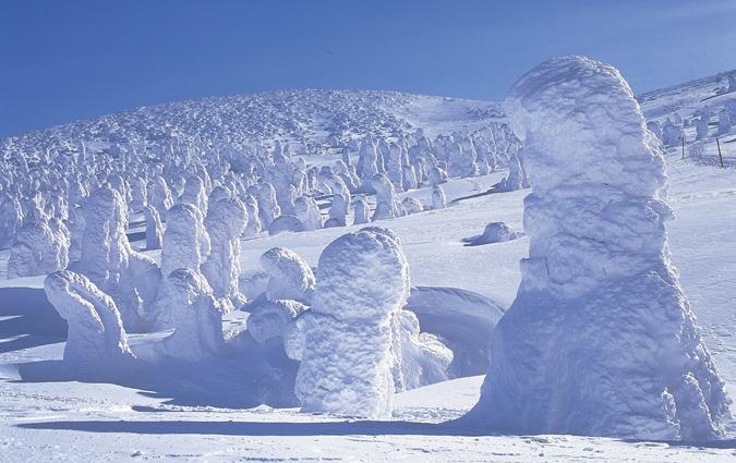 蔵王の樹氷画像